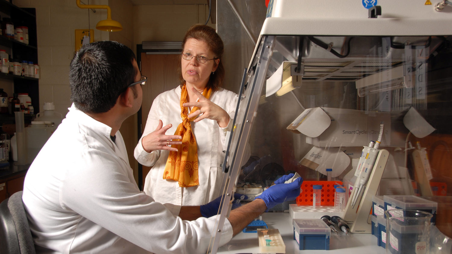 Professor discusses research work with grad student in lab.