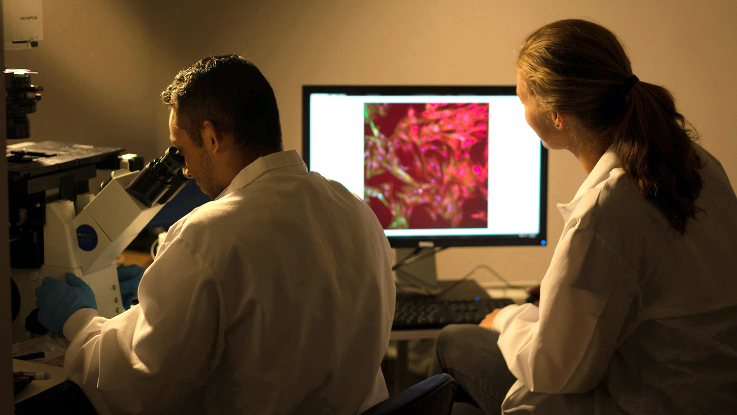 Header for news post - students working on microscopy project